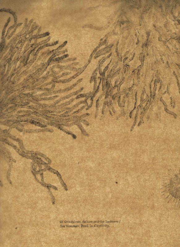 Sea Monsters (3)