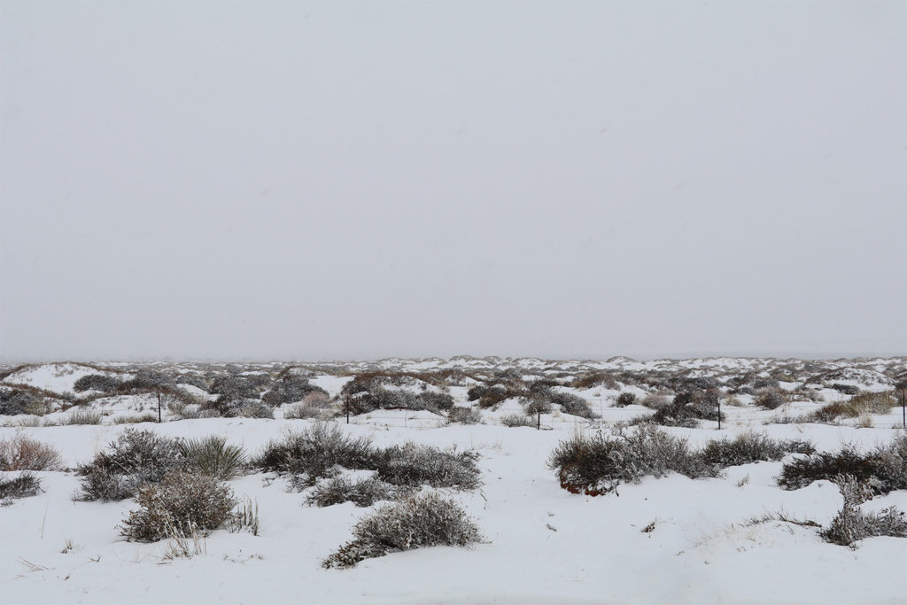 A desert field just off the roadside covered in snow and fog.